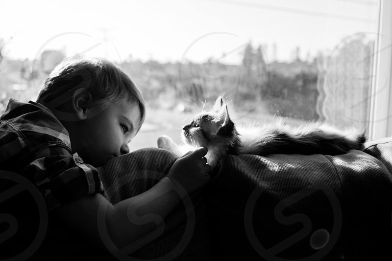 toddler petting cat in window sill photo