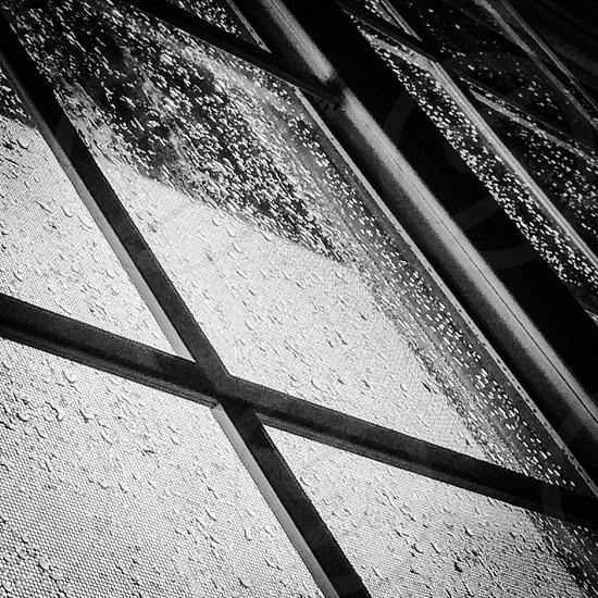 Black and white raindrops on windows photo