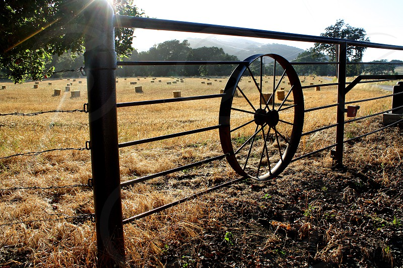 Afternoon sun shines on a hay field surrounded by a fence with a wagon wheel inside it. photo