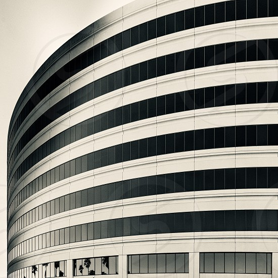 Building architecture curved monochrome Windows San Francisco  photo