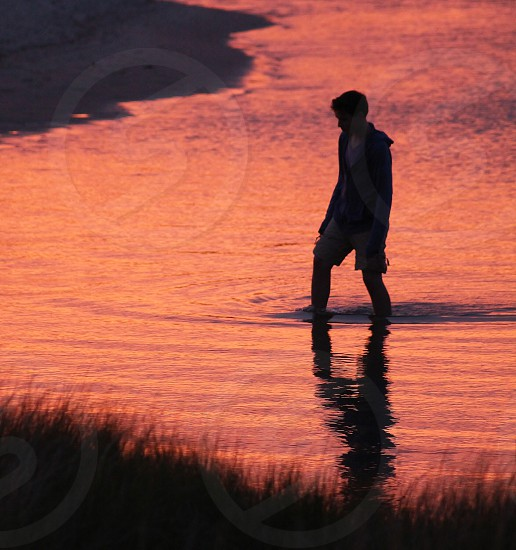 Exploring the marshes of Cape Cod at sunset... photo