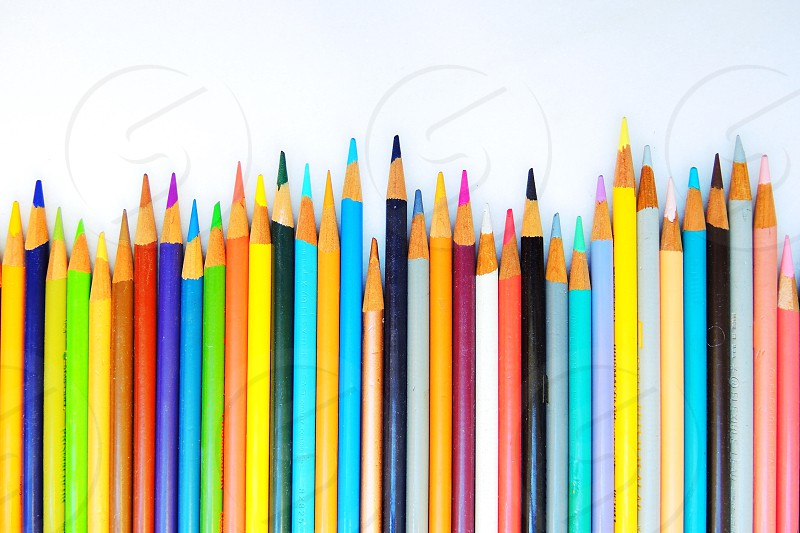 multi-colored drawing pencils photo
