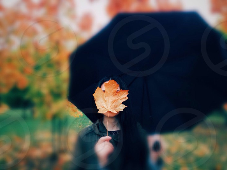 woman in black shirt carrying black umbrella standing while covering her face with dried maple leaf during daytime photo