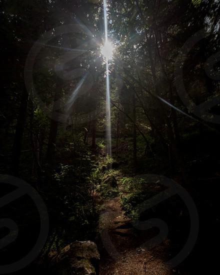 Beacon of Light photo