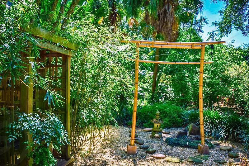 Zen | Health & Wellness Retreats photo