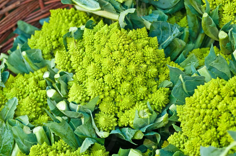 green kale Romanesco at a farmer market photo