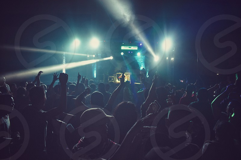 Music Festival photo