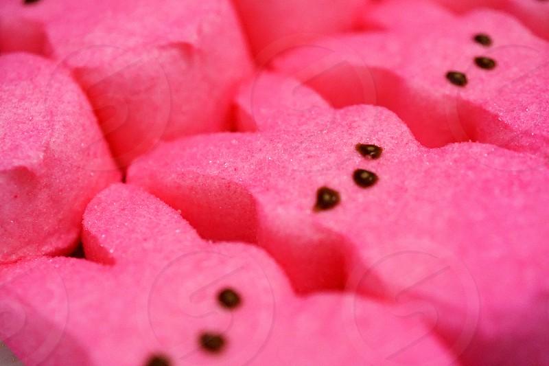 Peeps Easter Marshmellows photo