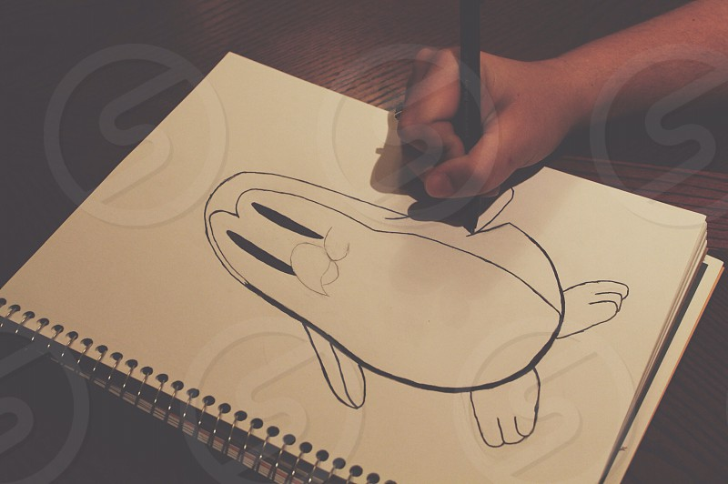 penguin sketch photo