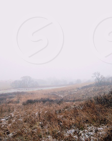 brown field covered with fog during daytime photo