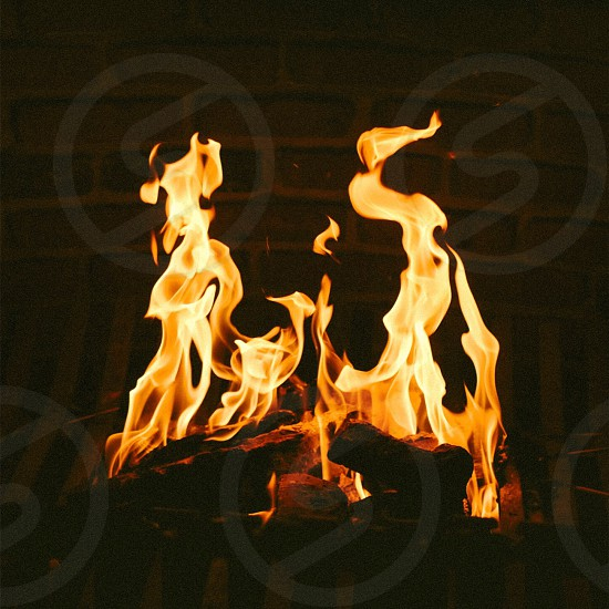 burning woods with red flames photo