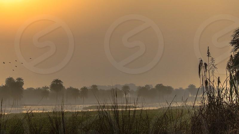 landscape birds beautiful india unbelievable super awesome landscape best super bird sanctury yellow sunset photo