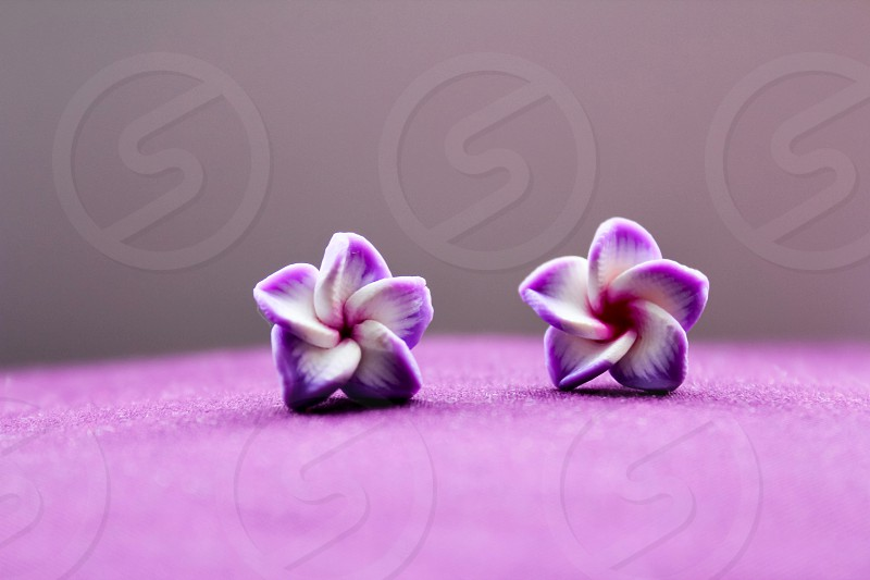 Purple earrings  photo
