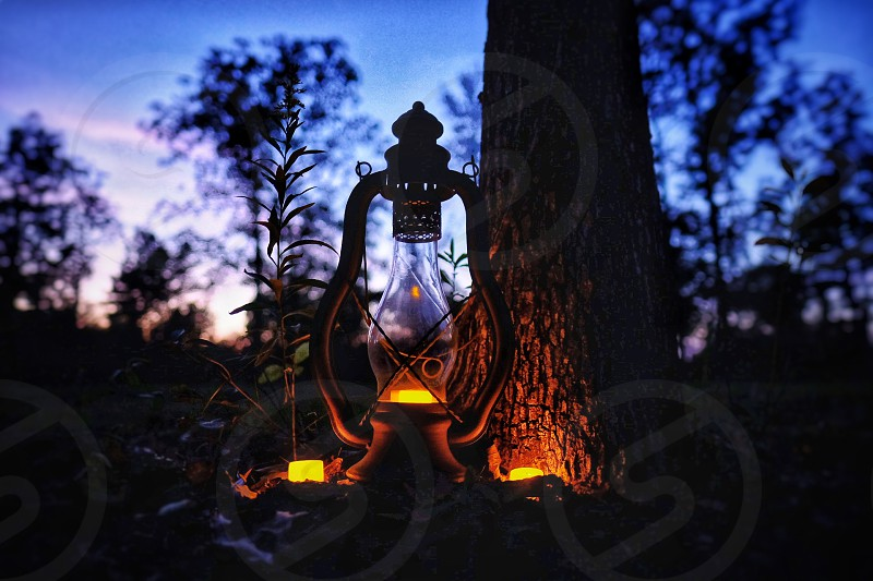 Lantern, light, candle, glow, forest, ambiance, color, landscape, nature,  night, illuminate by Stephen Little. Photo stock - Snapwire