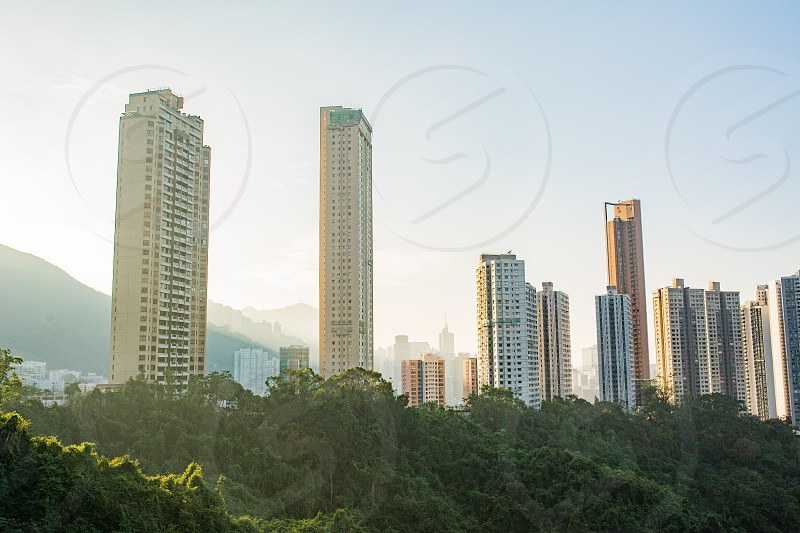 Hong Kong Stadium photo