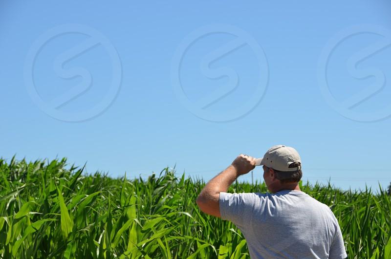 Farmer field corn baseball cap blue sky farming crops  photo