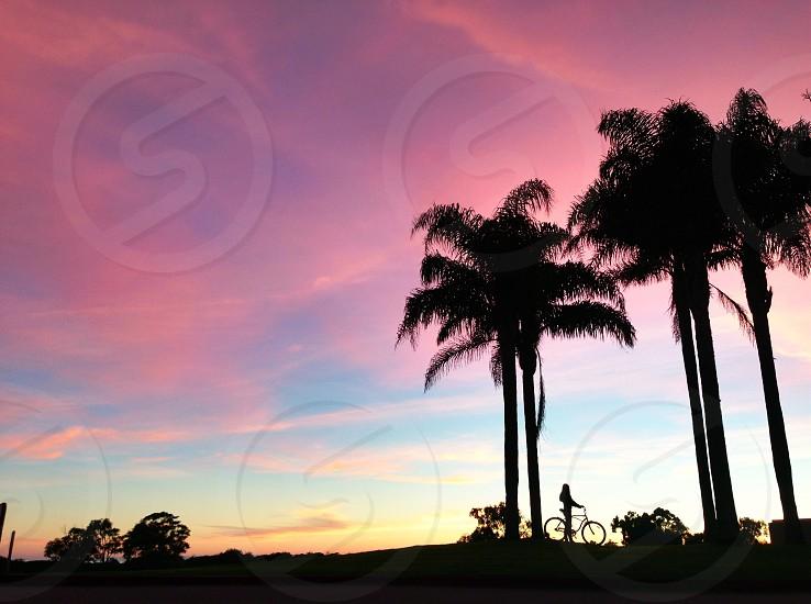 person riding bike at sunrise near palm trees photo