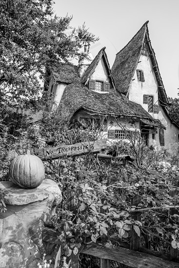 Storybook Witch's House photo