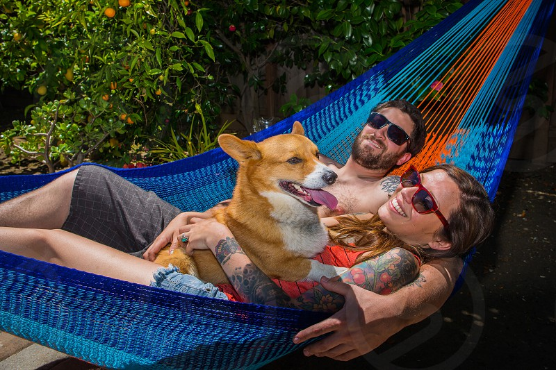 Couple holding a dog in a hammock photo