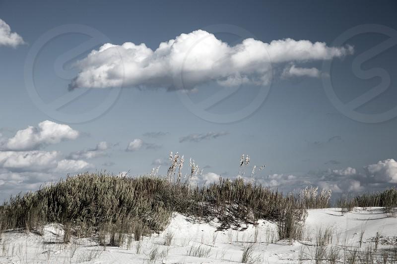sand beach air clouds dunes sea ocean grass blue summer photo