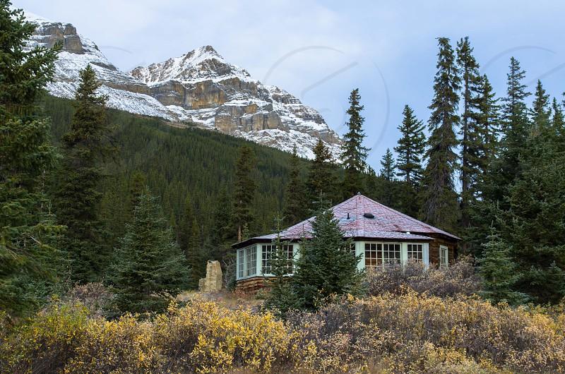 Cabin 1 photo