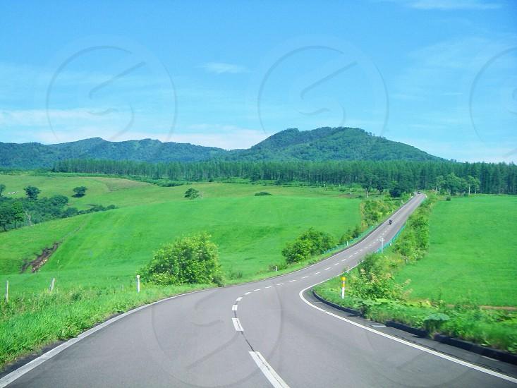 road through green valley photo