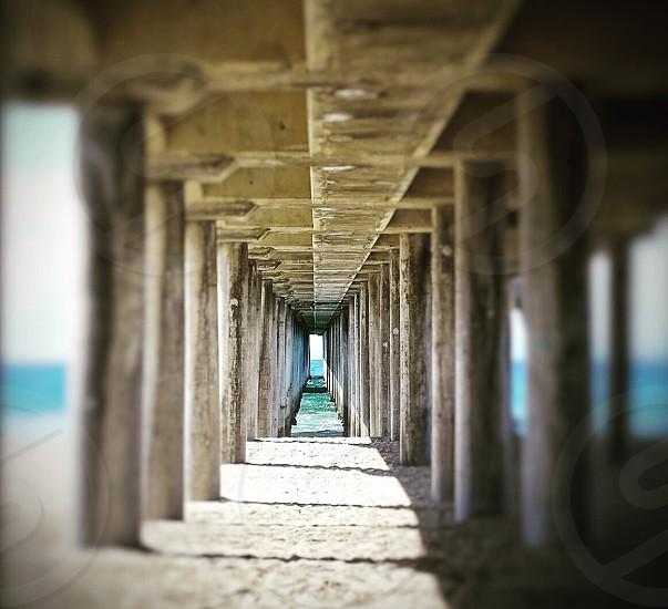 focus photography under of ocean dock photo