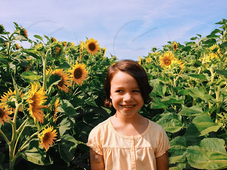 girl surrounded by sunflowers photo