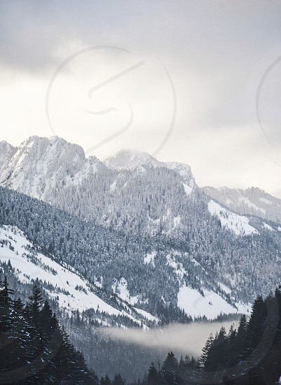 scenery winter mountains pacific north west photo
