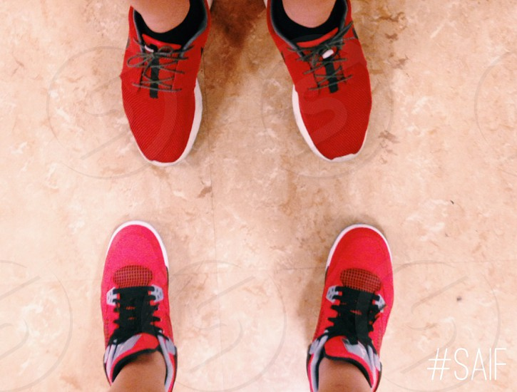 Toros and Roshes.  photo