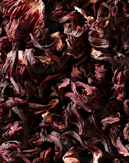Dark red purple hibiscus dried petals Jamaica flowers tea cold beverage photo