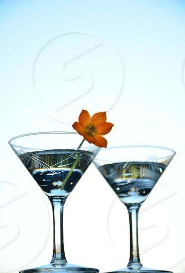 martini alcohol liquor drink beverage alcoholic beverage alcoholic drink cocktail mixed drink gin vodka vermouth liquid glass martini glass glasses clear blue flower photo