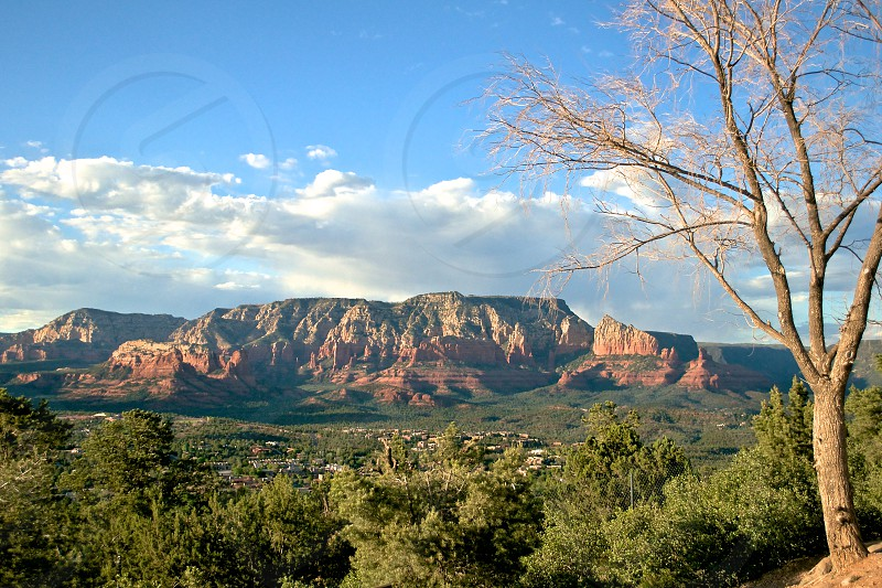 Red rocks and vortexes of Sedona Arizona. Hike the Airport Mesa trail and stay for the sunset. photo