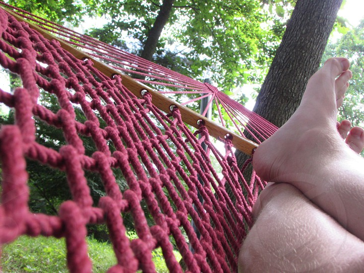 red hammock photo