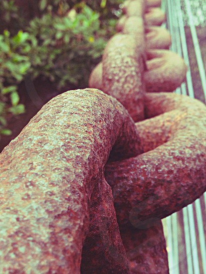 Chain link dock photo