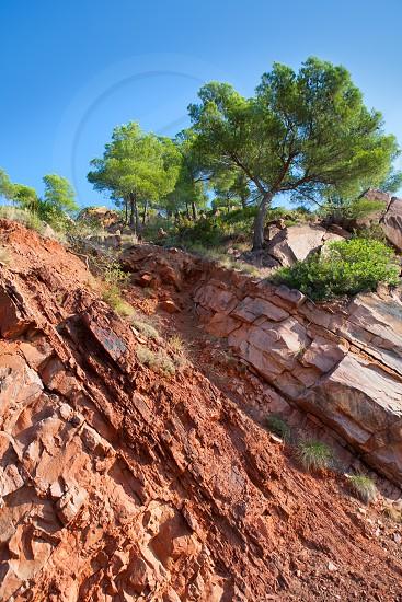 Castellon Desierto de las Palmas desert red mountains with pines at Spain photo