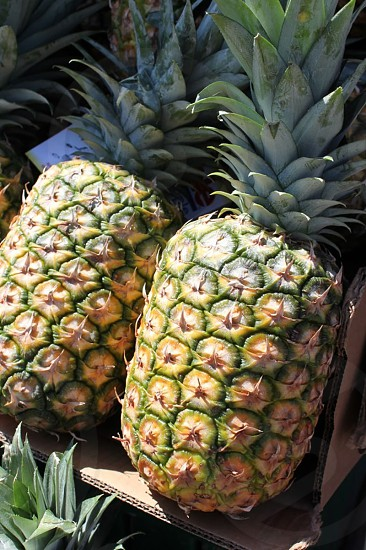 Pineapples tropical fruit farmers market photo