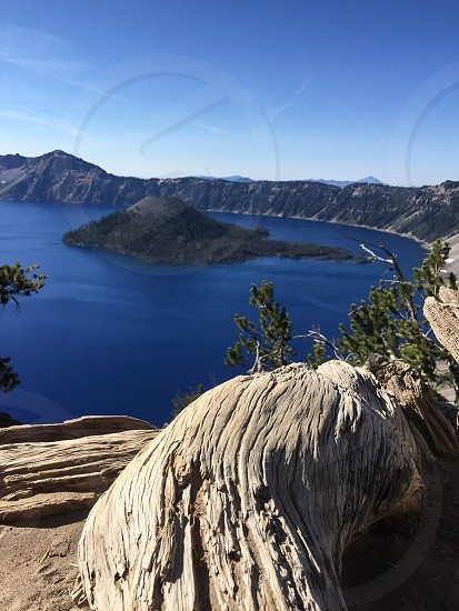 Outdoor day colour vertical portrait rock rocks. rocky Crater Lake geology caldera lake Chemult Klamath County Klamath Oregon OR West western United States US USA America North America road trip travel tourism tourist wanderlust blue summer trees evergreen nature natural lake branches twigs sheen shine glimmer gleam square roots leaves sand wood grooves Wizard Island view vista photo