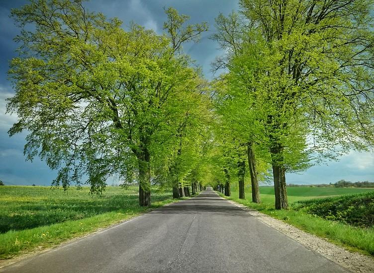 #road #travel #spring #poland #warmia photo
