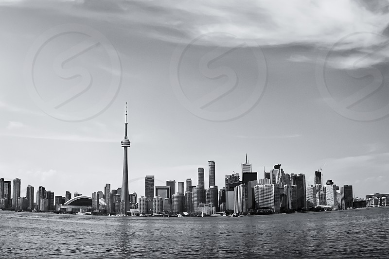 Skyline of Toronto in black and white. photo