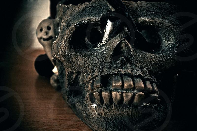 A decorative ceramic Halloween skull. photo