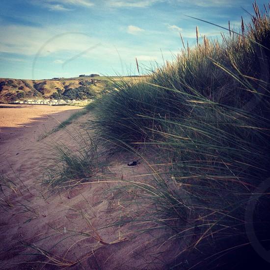 Pease bay beach on the east coast of Scotland near Edinburgh  photo