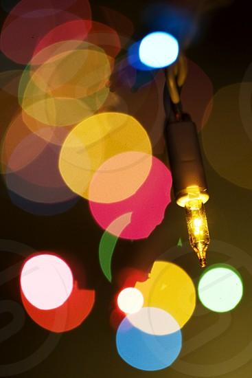 Color Christmas Lights (Macro) photo