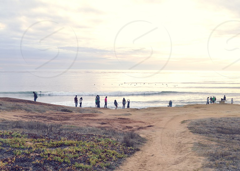 survey surf surfer california waves ocean people photo