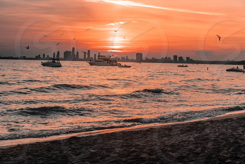 Yacht sailing at the Toronto Island beach at Sunset. photo