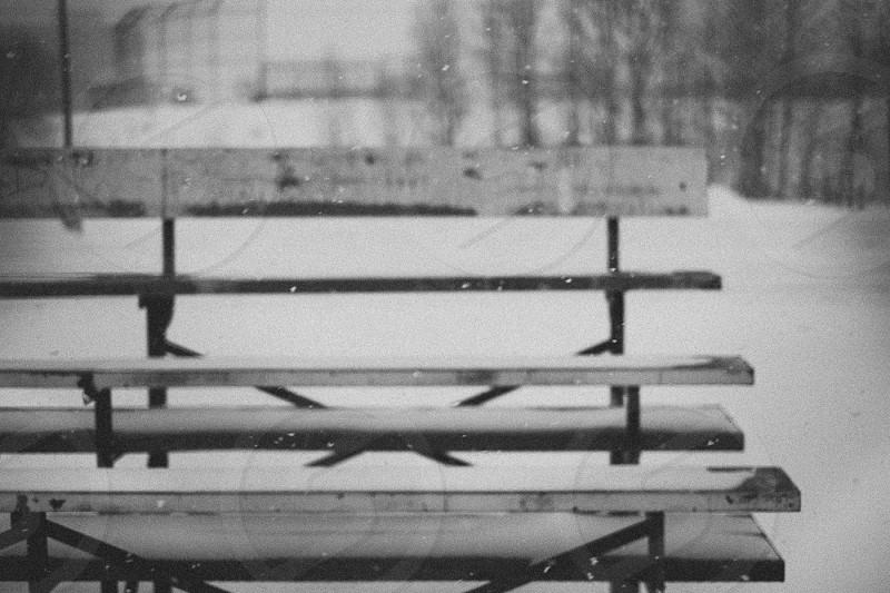 Winter Bench photo