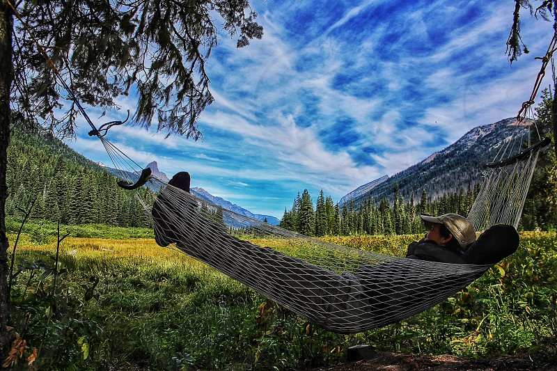 person resting on hammock tied on two trees during day time photo