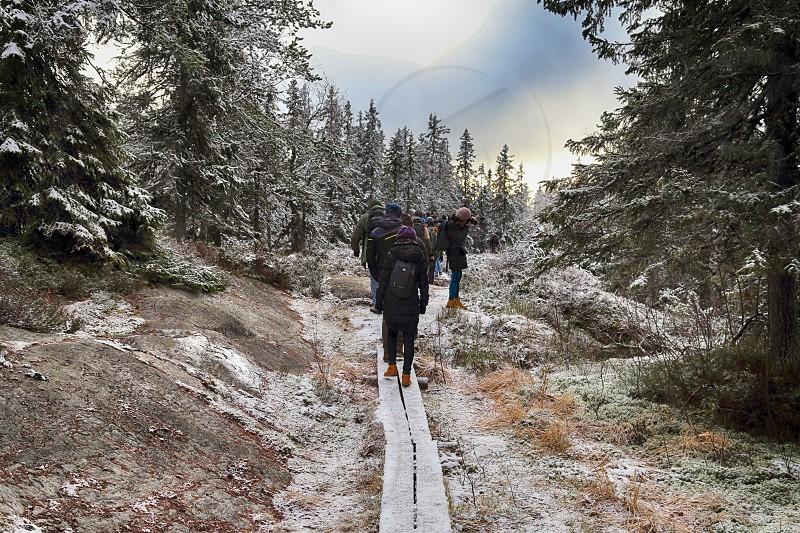Visitors in Koli National Park in Finland in winter photo