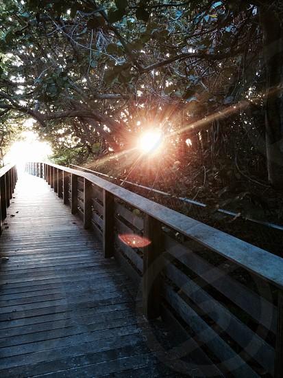 A boardwalk to the beach. photo