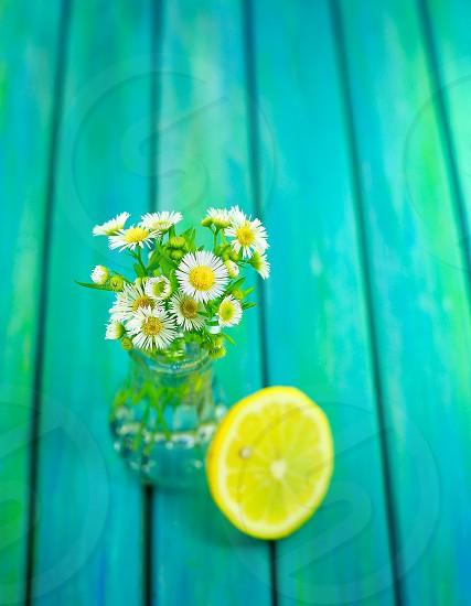 white and yellow dandelions beside and a half slice yellow lemon photo